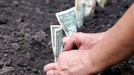Приняты изменения относительно предельного размера арендной платы за землю