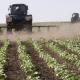 Мінагрополітики планує створити комфортне бізнес-середовище для малих і середніх фермерів