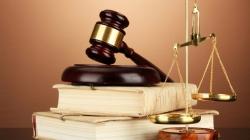 Как Раде предлагают защищать права кредиторов