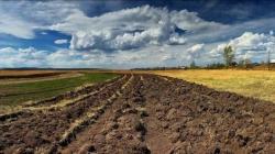Право аренды земли могут начать продавать за копейки