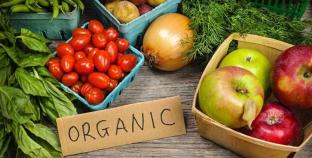 Украина успешно развивает органическое производство