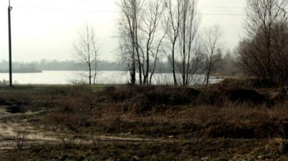 Киевские активисты превратили заброшенное болото в зону отдыха европейского уровня без единой гривны из государственного бюджета