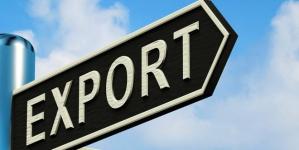 За полгода украинский экспорт снизился на 10%
