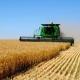 Аграриям точно не вернут льготный НДС — Южанина