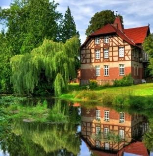 Каждый третий загородный дом был продан на редукционе