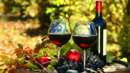 Вторая Всеукраинская конференция «Успешное виноградарство и виноделие-2017» успешно завершила свою работу