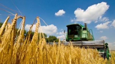 Рентабельность и прибыль украинского аграрного сектора по итогам 2016г. может сократиться, – эксперт