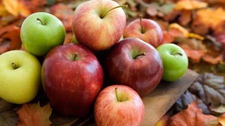 Экспорт яблок из Украины достиг докризисного уровня