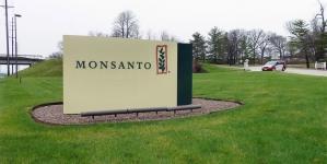 Крупный производитель семян Monsanto строит завод в Украине