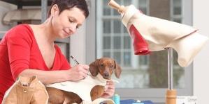 Бизнес без мерок: Как открыть ателье одежды для собак