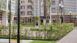Динамика цен на первичную недвижимость в столичном пригороде: «недорогой» Гостомель дорожает быстрее остальных населенных пунктов