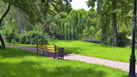 Закладка нового парка в Броварах: экоответственность