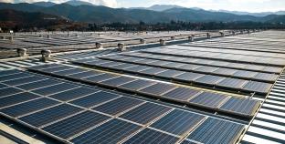 Carlsberg Group присоединилась к RE100 — группе международных компаний, переходящих на 100% возобновляемой электроэнергии