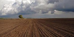 Земельная реформа исключена из списка требований МВФ