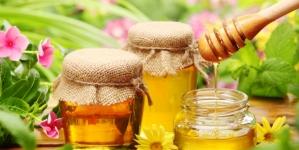 Украина вошла в топ-5 мировых поставщиков меда