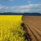 Запуск земельной реформы отложили на год