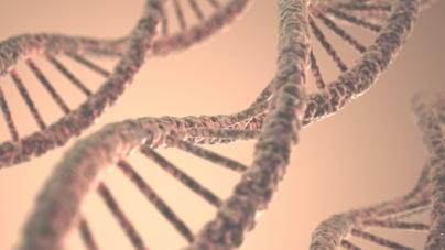 В США компания предложила клиентам заработать криптовалюту на продаже данных ДНК