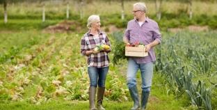 Мелкие фермерские хозяйства получили лобби в правительстве