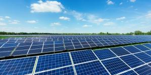 Бельгийская компания намерена построить СЭС в Житомирской области