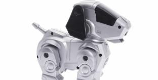 Робот-собака от Boston Dynamics научился открывать двери