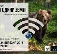 WWF_Bear