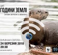 WWF_Otter