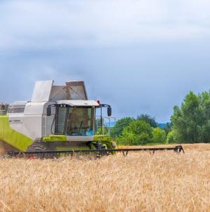 «ОККО Агротрейд» профинансировал производителей АПК почти на 1 млрд гривен