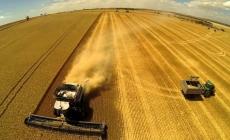 """ЕБРР выделил $12,5 млн для расширения агрохолдинга """"Нива Переяславщины"""""""
