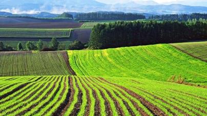 Определены основные сценарии развития рынка земли в Украине