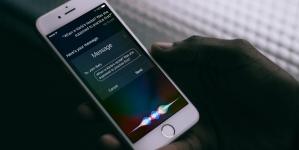 Google и Walmart создадут приложение для голосового шопинга