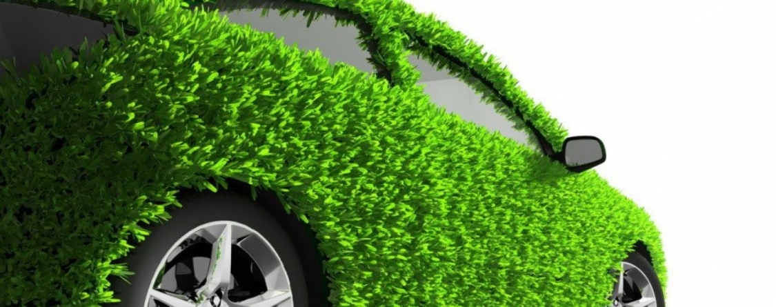 Едешь в Европу на авто – не забудь «Зеленую карту»