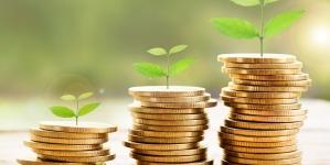 УА АПФ пропонує включити розвиток пенсійного накопичення до Комплексної концепції розвитку фінансового сектору до 2025 року