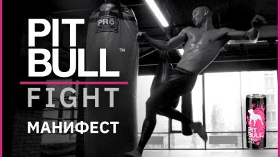 Pit Bull FIGHT – новое слово в культуре проведения смешанных боев