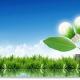 В Украине запустят Фонд зеленых инвестиций GIF UA