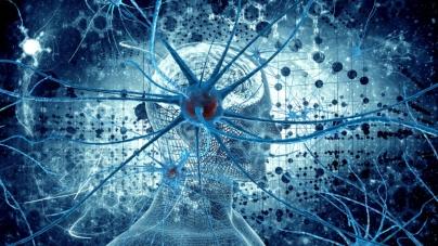 Як вижити в часи технологічної революції та влади алгоритмів