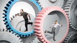 Циклічність життя, колесо білки і випадковість