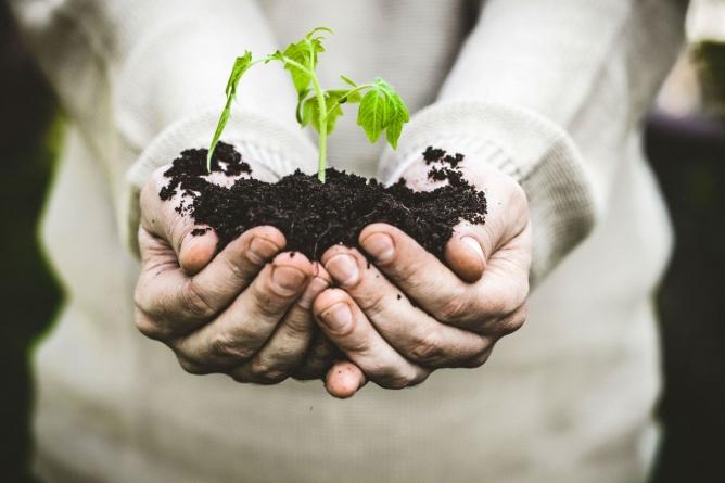 Держгеокадастр спрощує адміністративну послугу видачі дозволу на зняття та перенесення ґрунтового покриву земельних ділянок