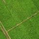 Держгеокадастр розширює доступ до даних про координати поворотних точок меж земельних ділянок