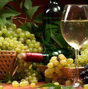Українські виноградарі і винороби закликають про допомогу!