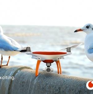 Топ українських морських курортів за версією Vodafone