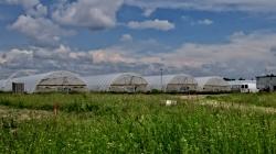 Тепличное хозяйство в Волынской области