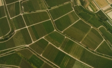 Держгеокадастр запроваджує новий електронний сервіс «Замовлення проведення державної експертизи землевпорядної документації»