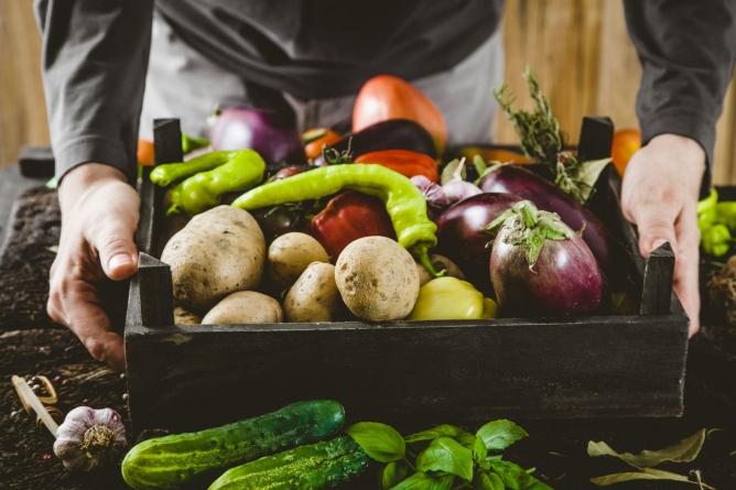 ПриватБанк видав найбільше пільгових позик аграріям та фермерам