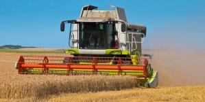 Узбекистан вирішить продовольчий дефіцит у співпраці з Україною